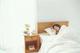 睡眠時に体の痙攣で目が覚める!睡眠中の痙攣の原因と改善・予防方法