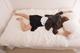 冬なのにひどい寝汗|原因と考えられる病気について徹底解説