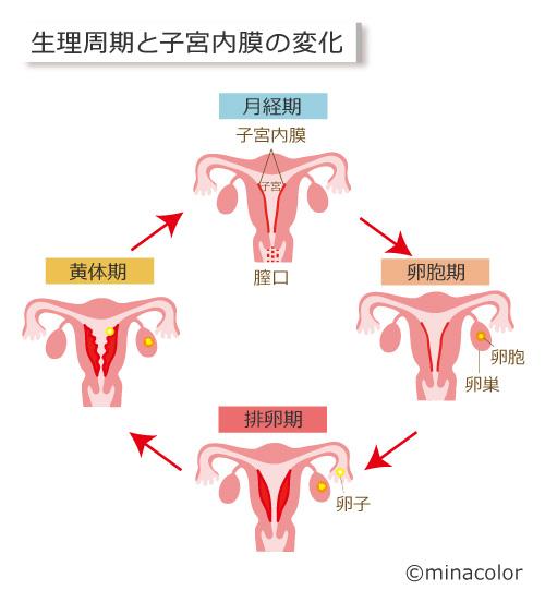 妊娠 超 初期 おり もの におい