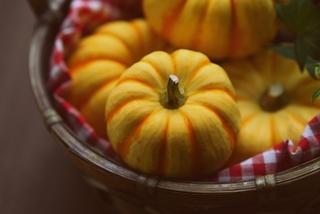 秋バテを侮らないで!秋バテの症状・原因・対策・食事などを解説