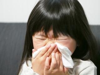 【花粉症の薬】小児におすすめジルテックドライシロップについて