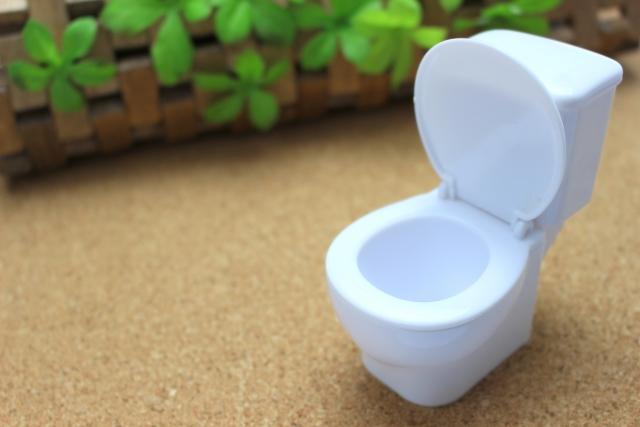 女性の頻尿はなぜ起こる?頻尿の理由を10代から40代まで世代別に解説!