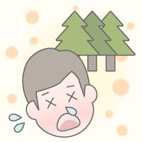冬の花粉症の原因となる花粉の種類は?12月・1月・2月の花粉症
